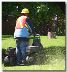 Stu's Professional Lawn Care is Reliable, Professional and Affordable