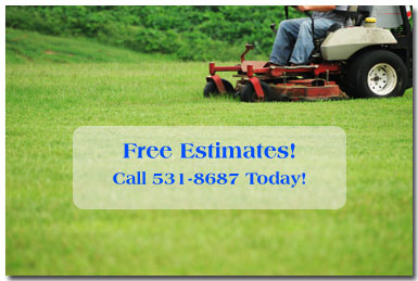 Mowing services by Stu's Professional Lawn Care